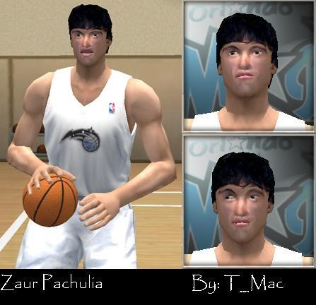 zaur_pachulia_by_t_mac.jpg